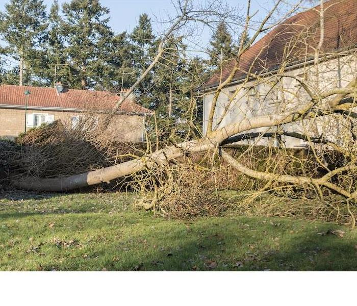 Storm Damage Three Unexpected Ways FEMA Can Help Your Home Recover From a Storm